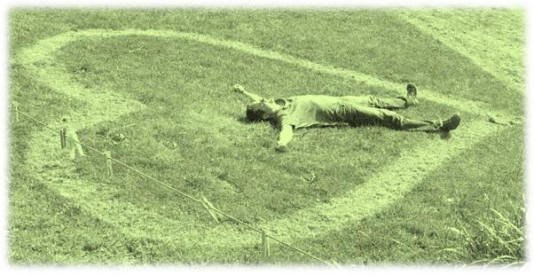 heart lawn